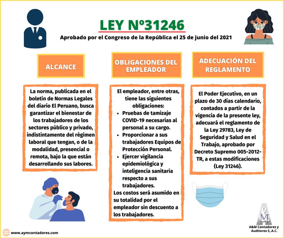 LEY Nº31246